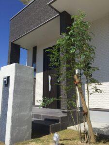 直方市に新モデルハウス 玄関